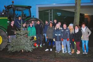 ZaK-Jugendliche-sammeln-Tannenbaeume-ein_image_630_420f_wn
